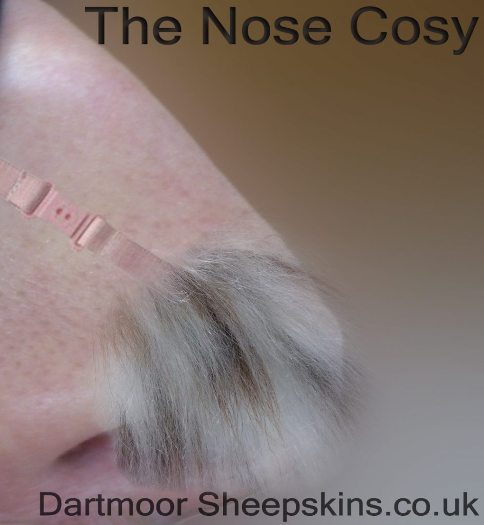 small piece of sheepskin covers exposed tip of nose