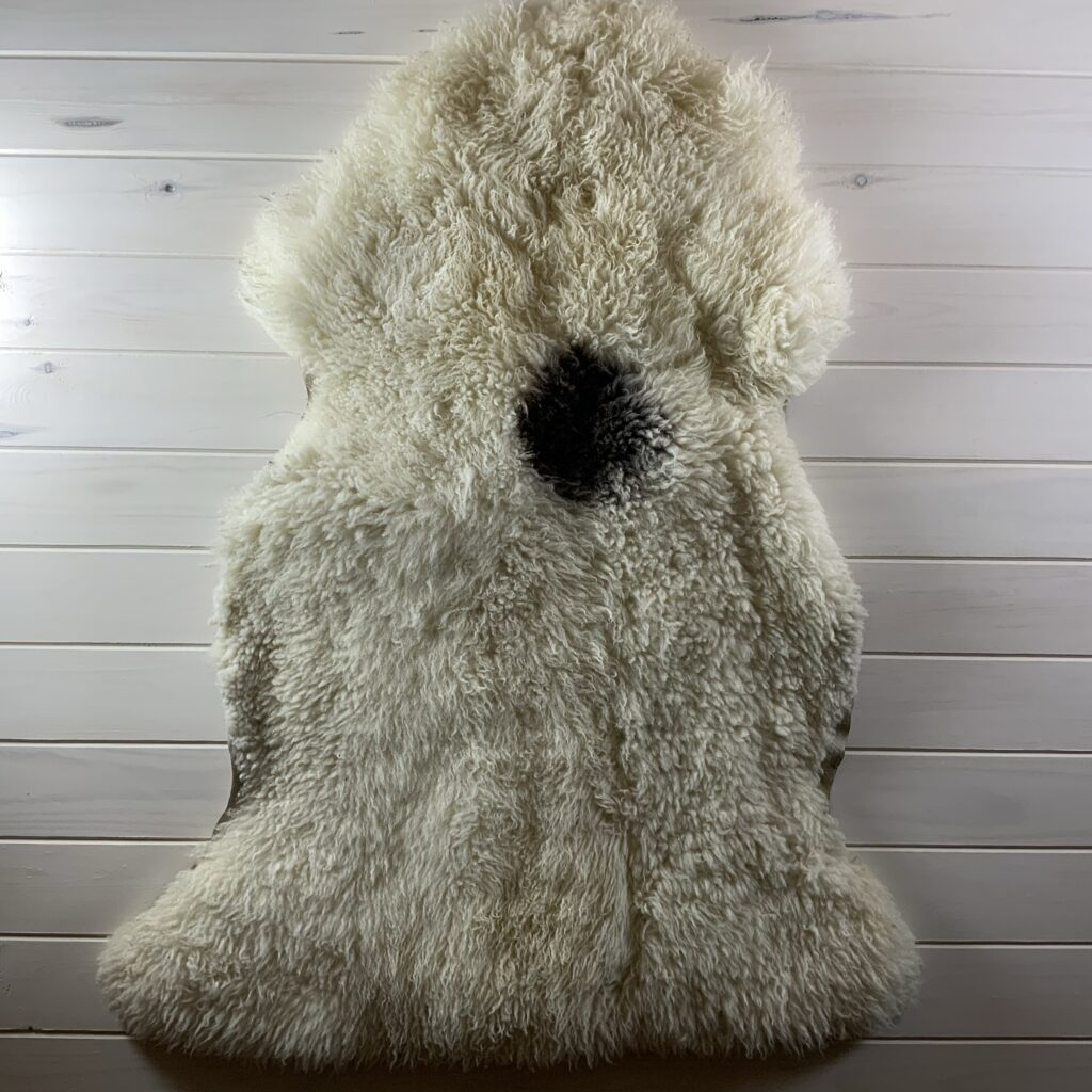 sheepskin from above showing areas of light felting