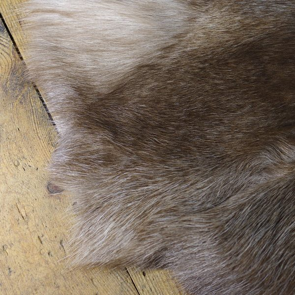 Turku Arctic Circle Deer Skin   Sept 2021