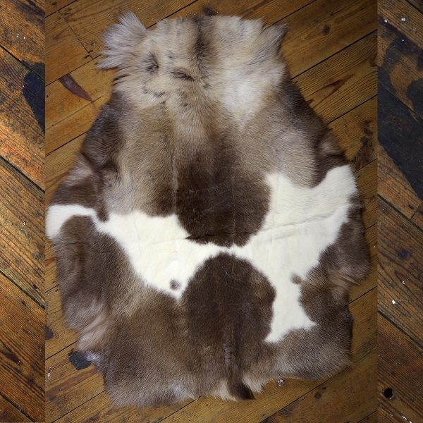 Arctic Reindeer Hide - Vaasa