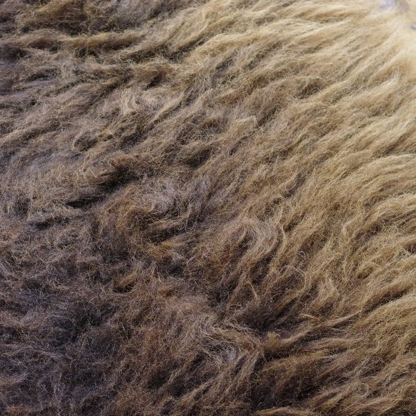 Hennock sheepskin july 2021 dartmoor