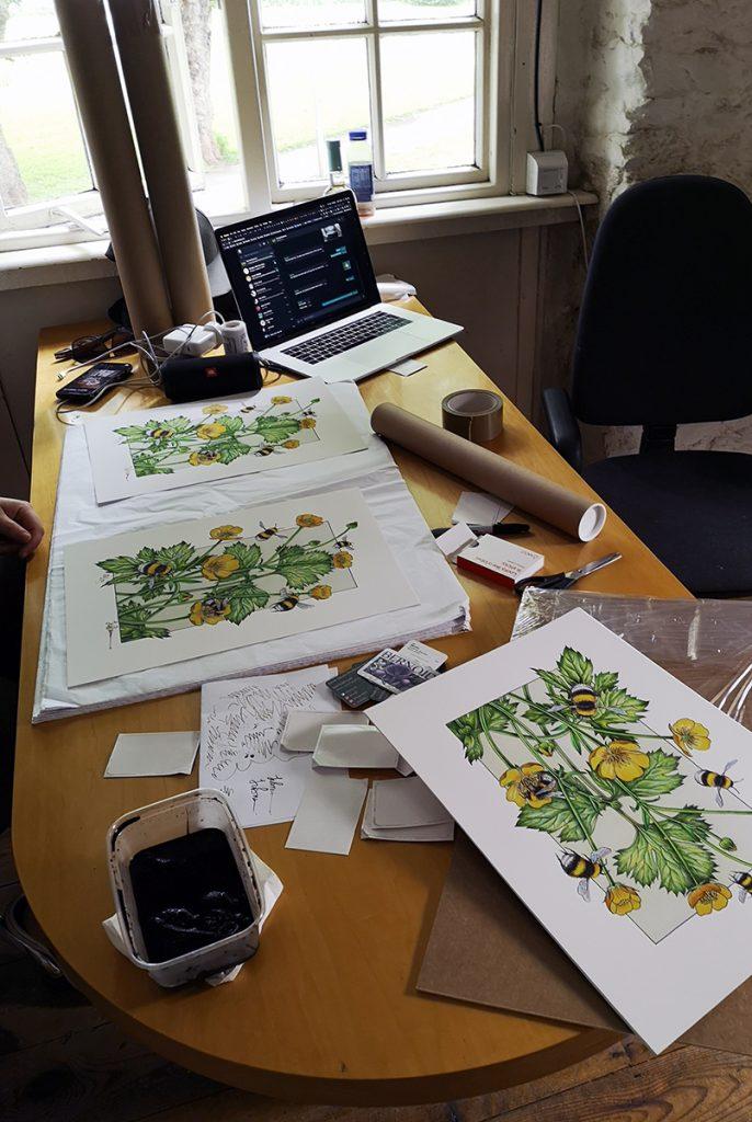 jo brown, illustrator. Hayloft