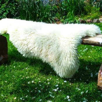 Sheepskin on granite bench